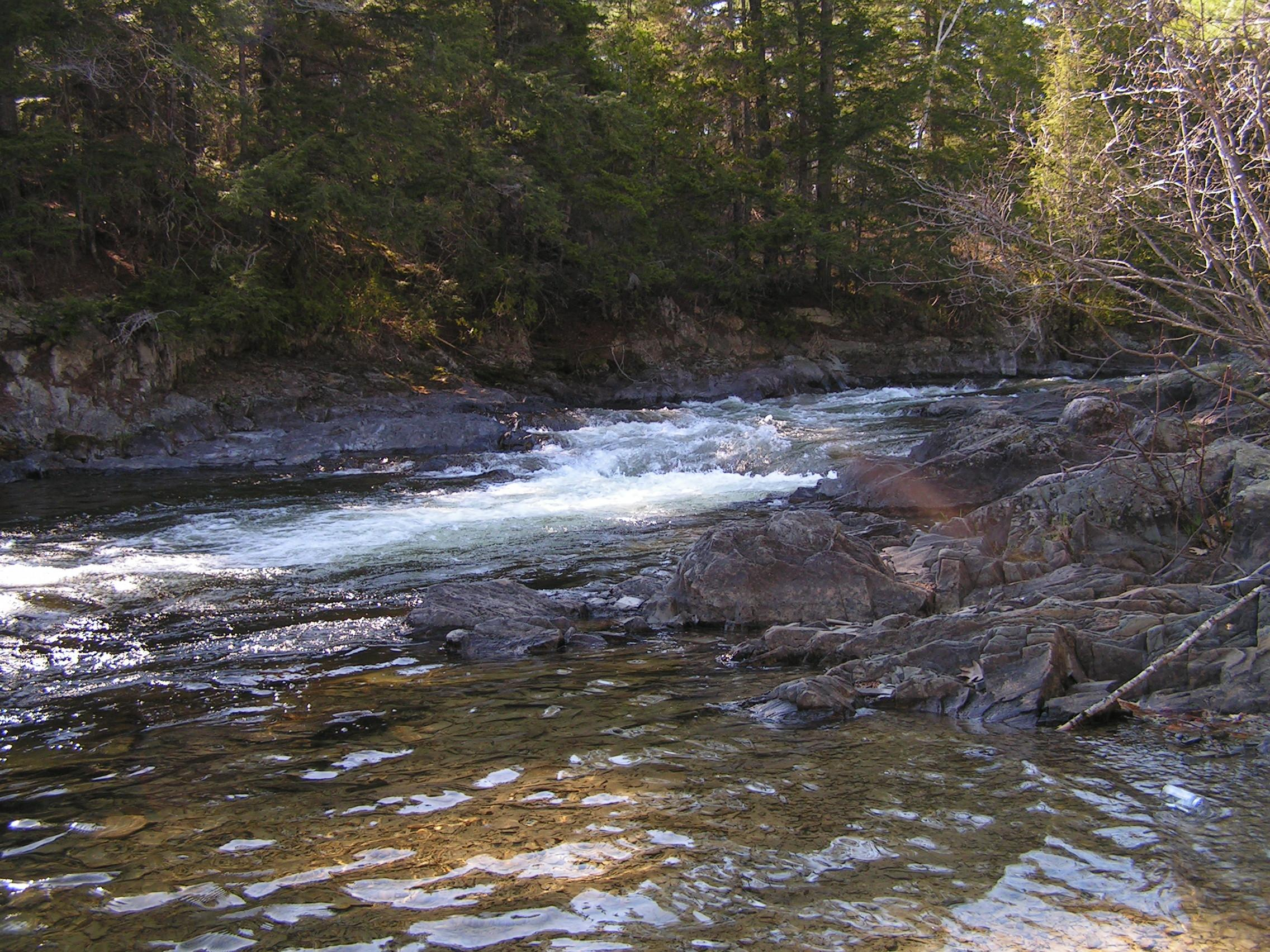 Rapids on Grand Lake Stream, Maine