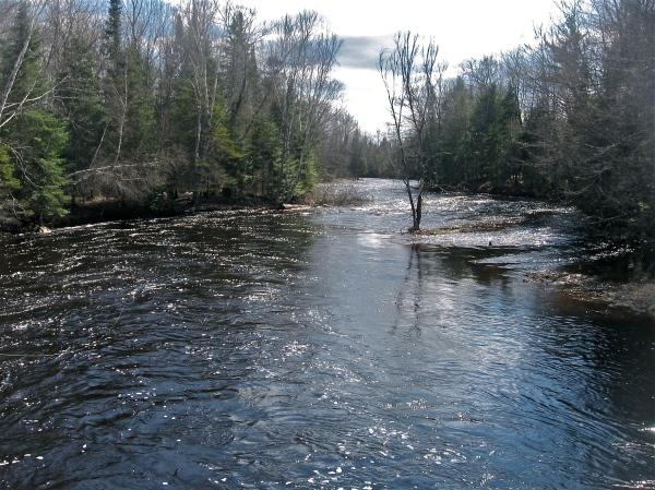 Flooding on Birch Stream