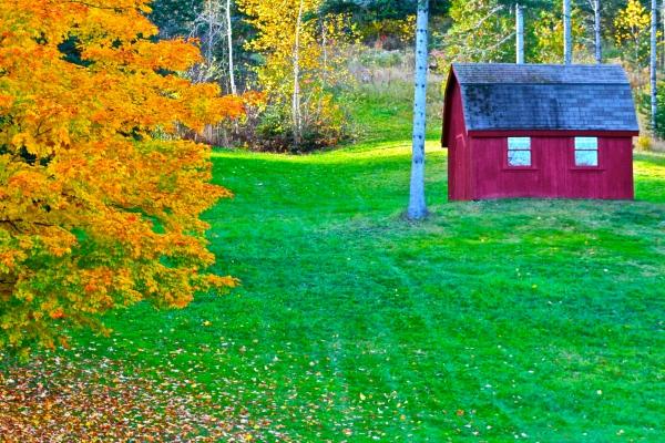 Rusty Fall