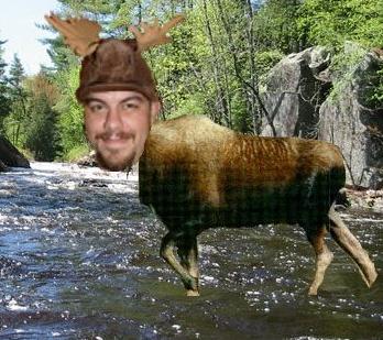 Moose Man!